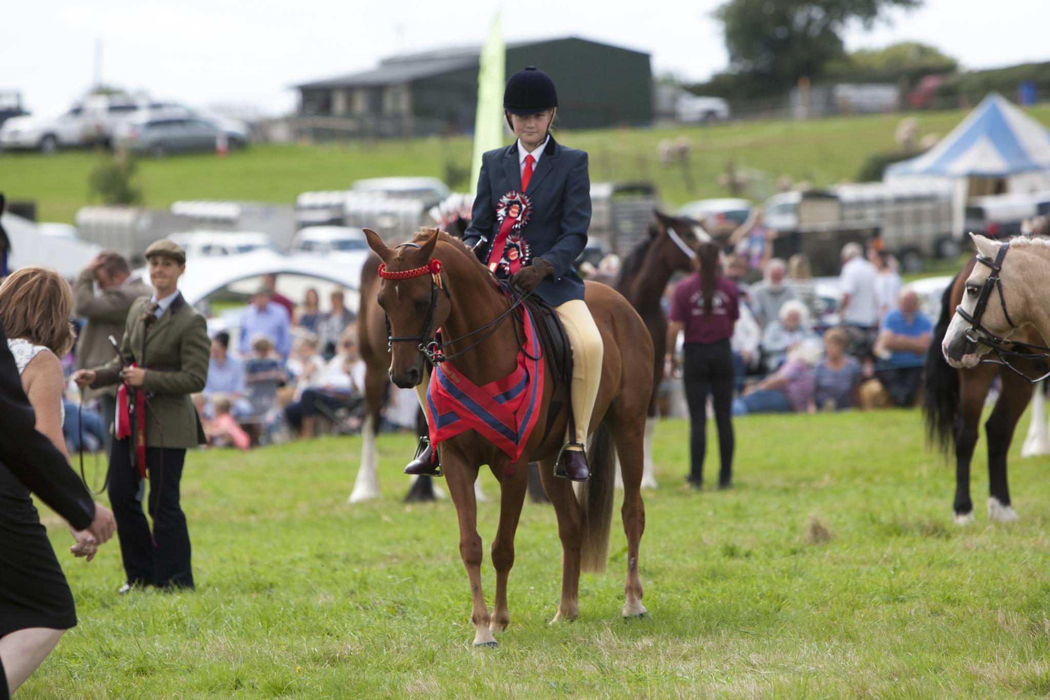 2017 Fillongley Show_114