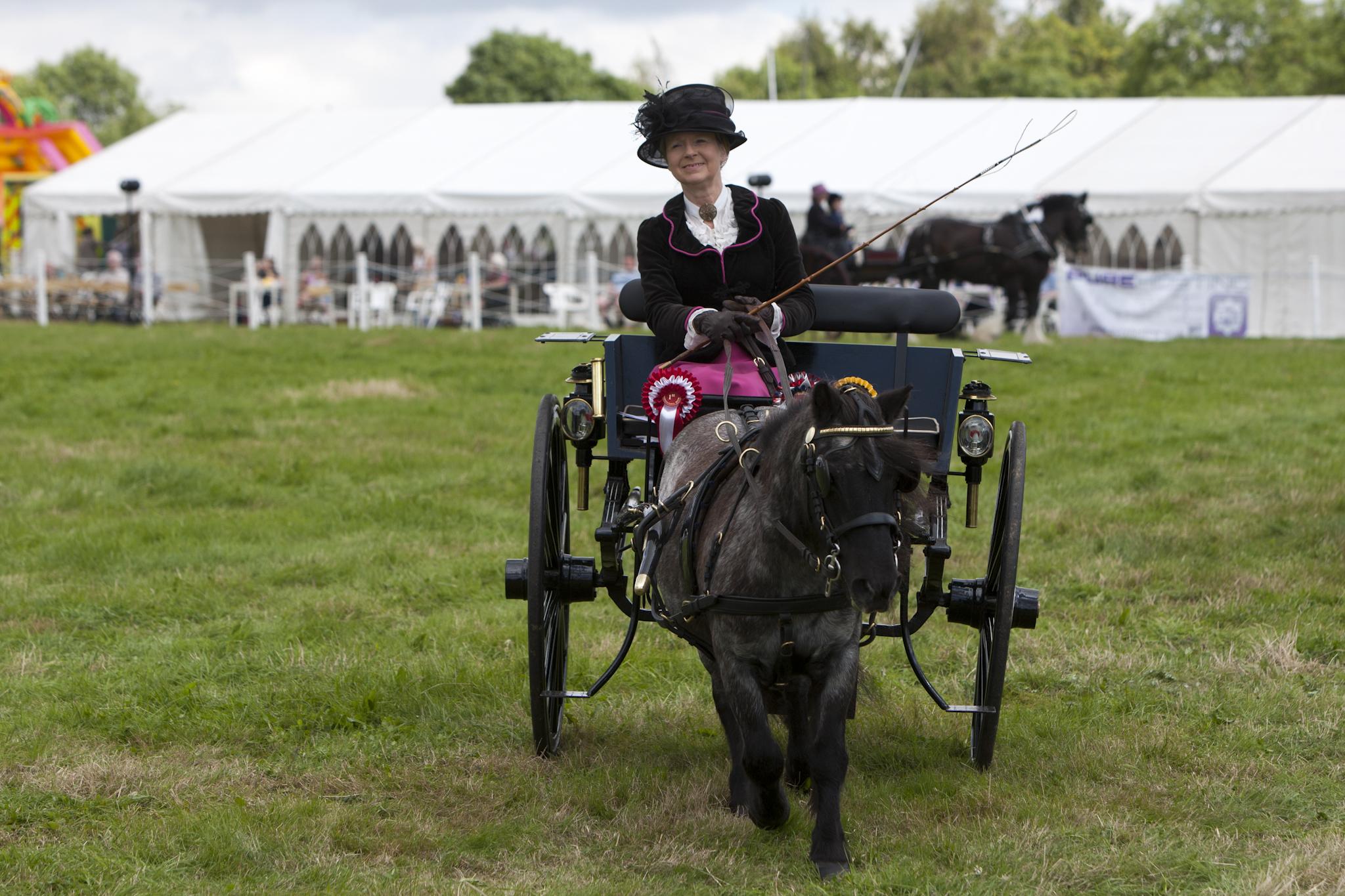 2017 Fillongley Show_57