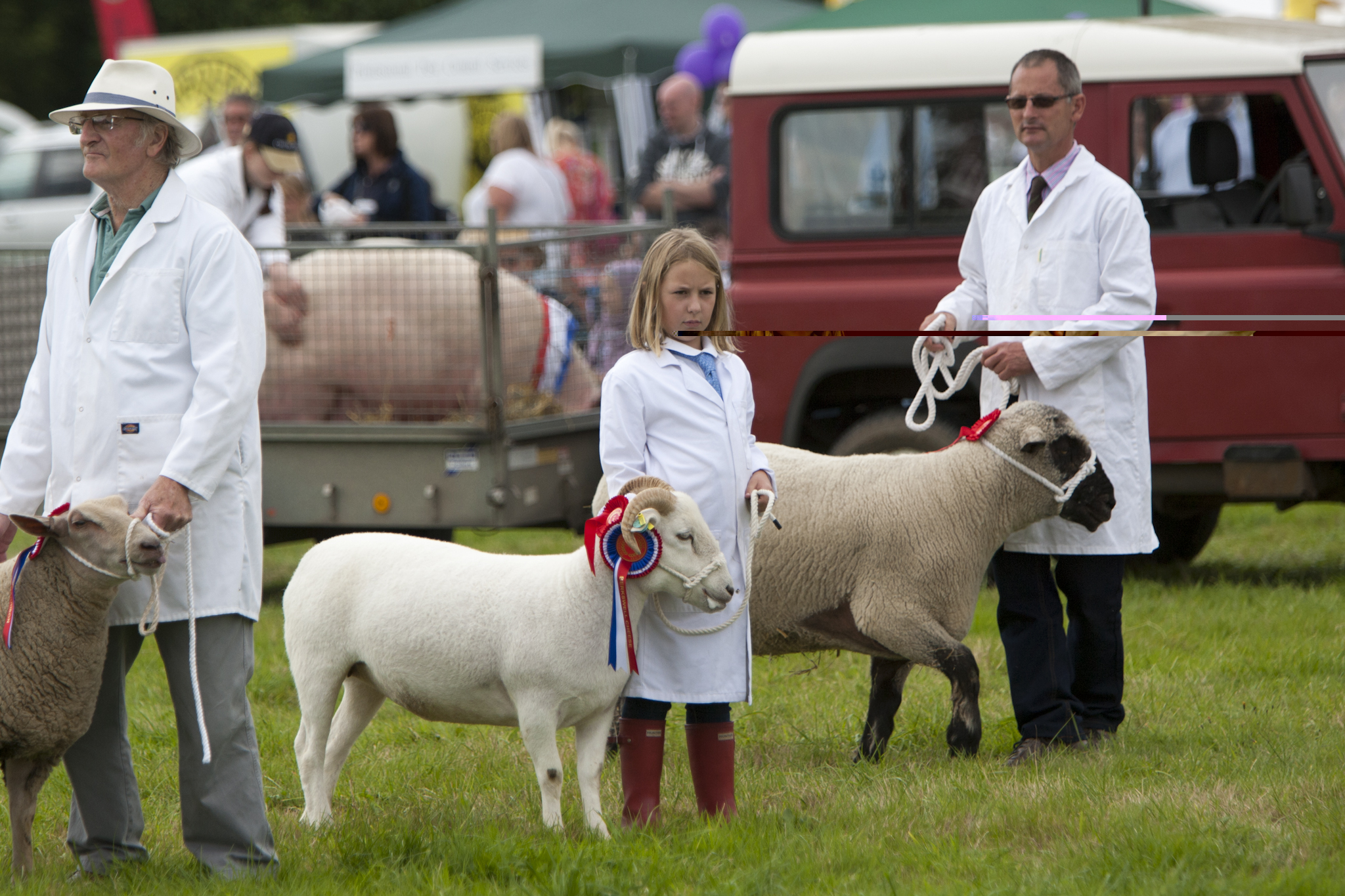 2017 Fillongley Show_107