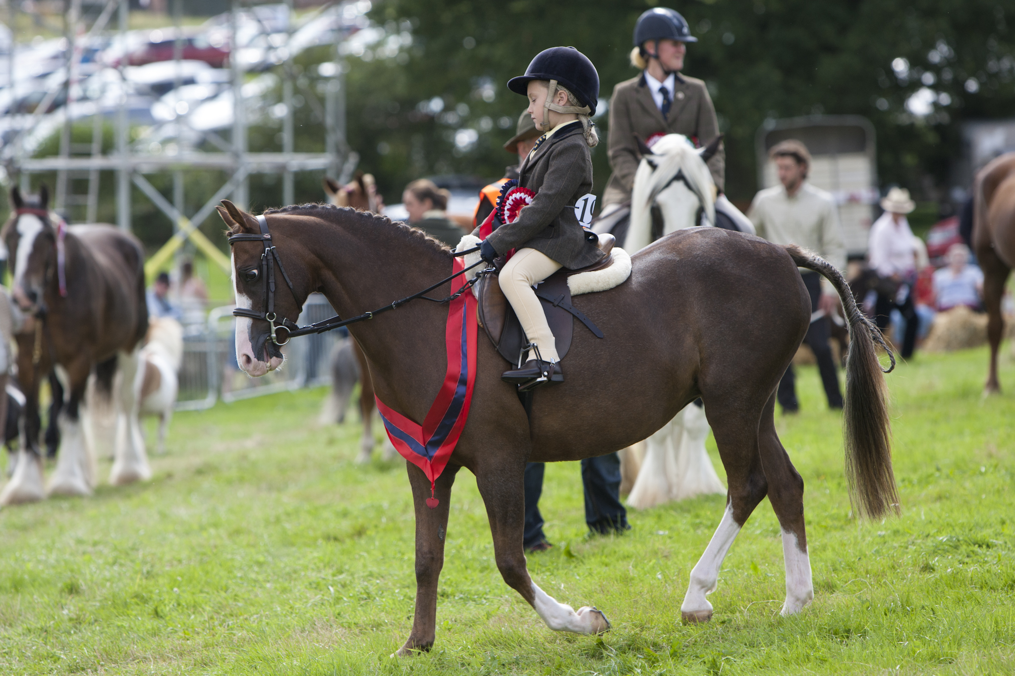 2017 Fillongley Show_117