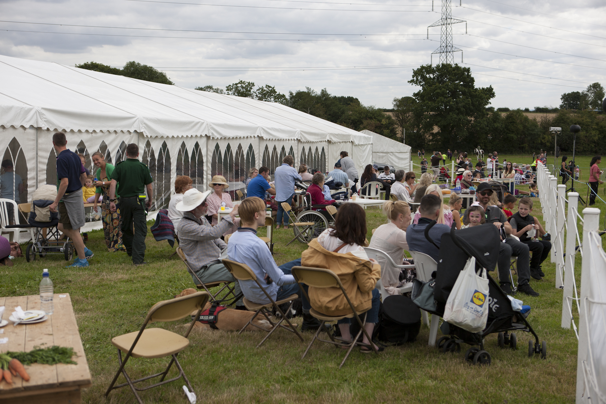 2017 Fillongley Show_14