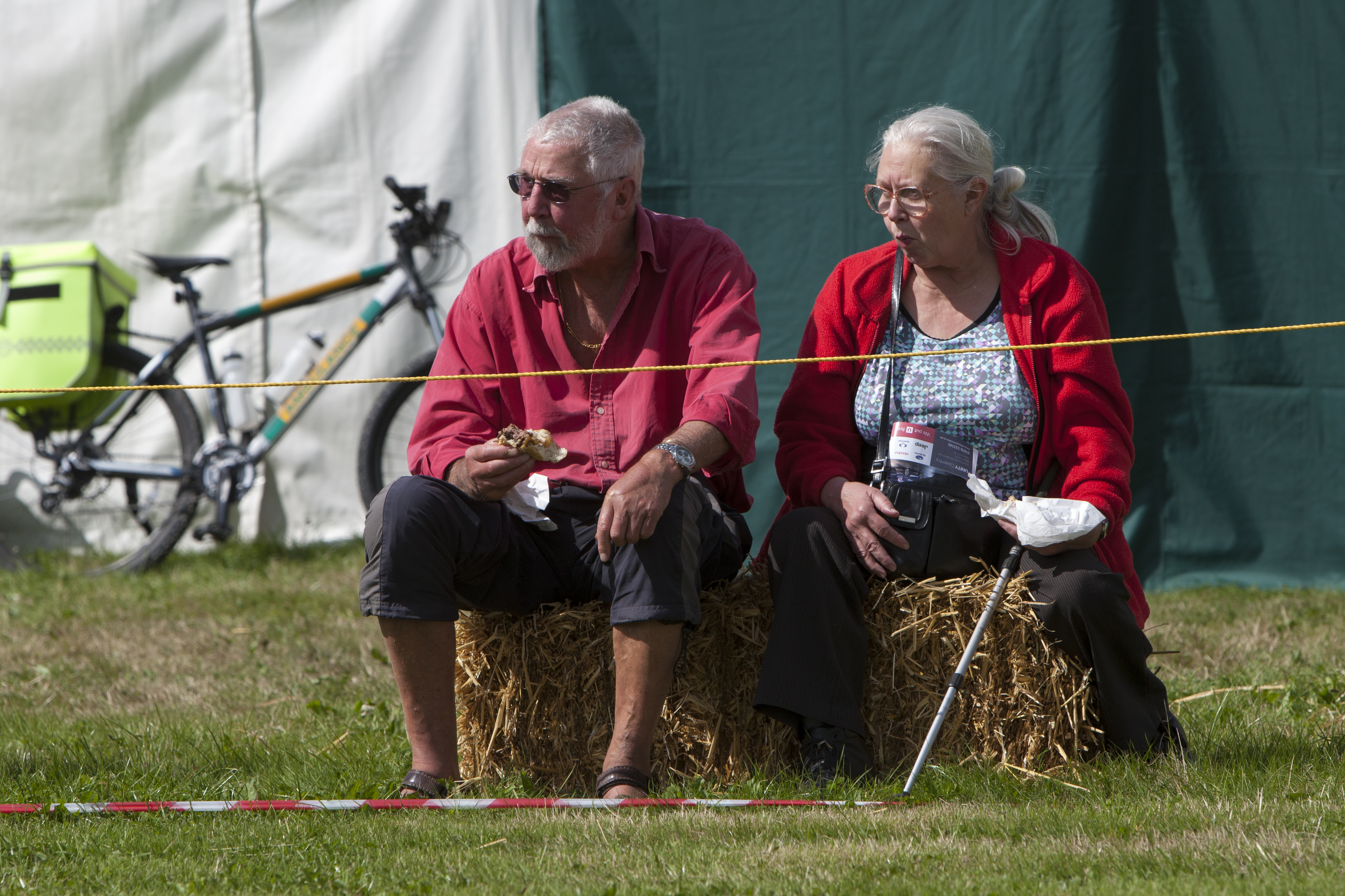2017 Fillongley Show_23