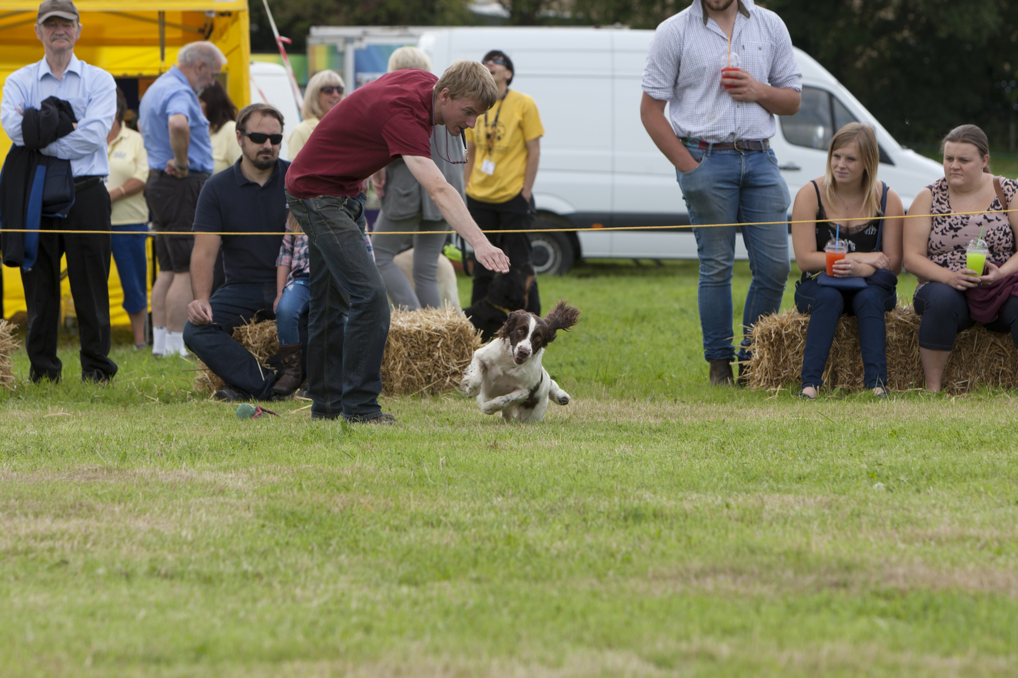 2017 Fillongley Show_44