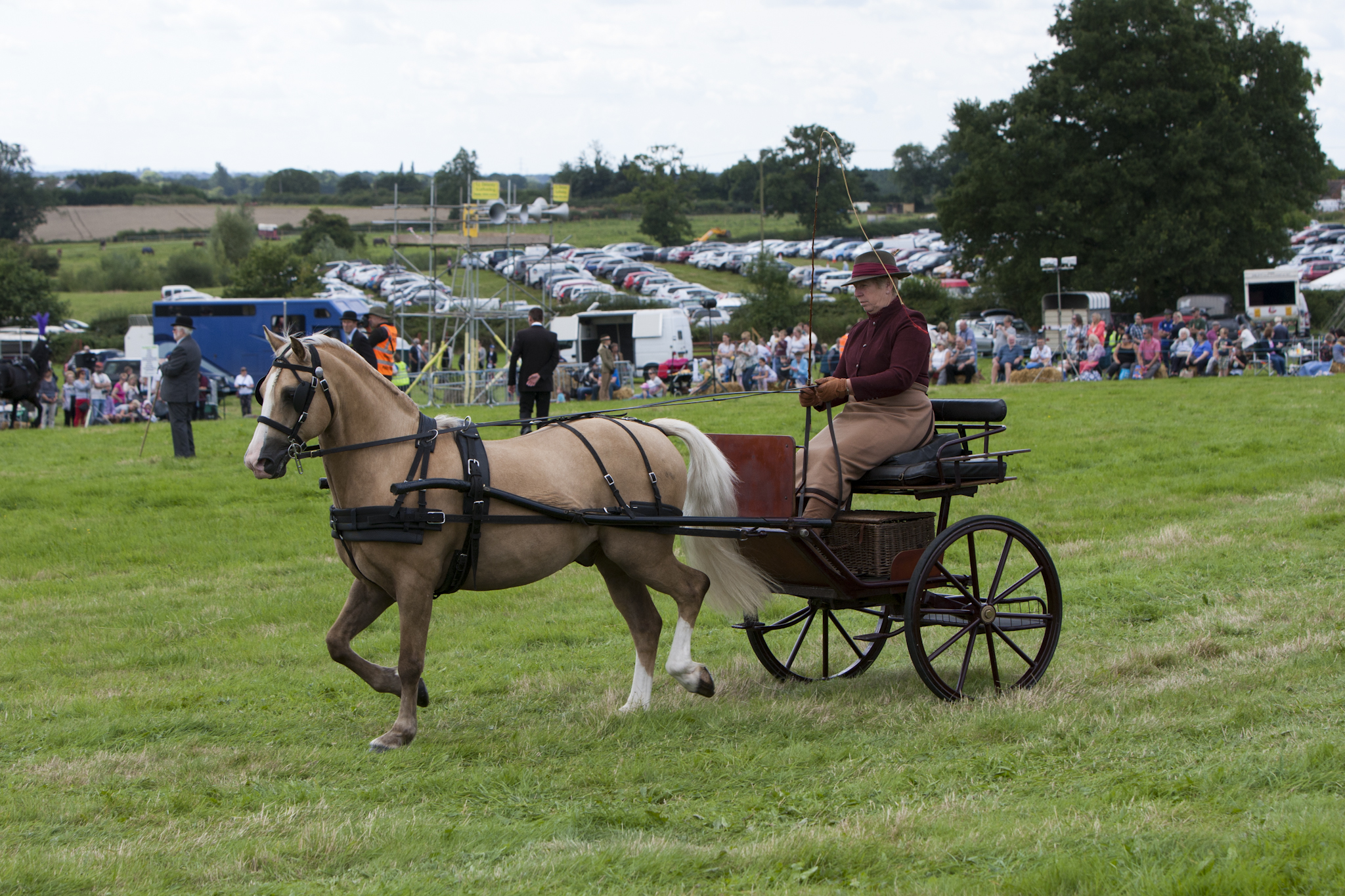 2017 Fillongley Show_46