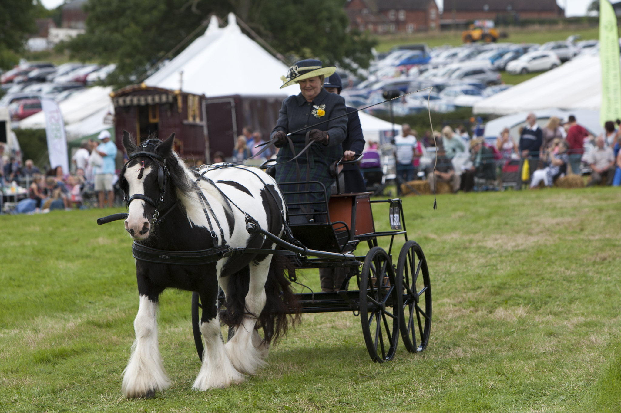 2017 Fillongley Show_50