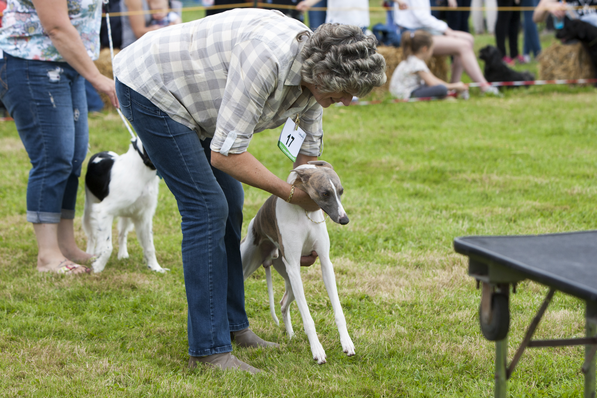 2017 Fillongley Show_70