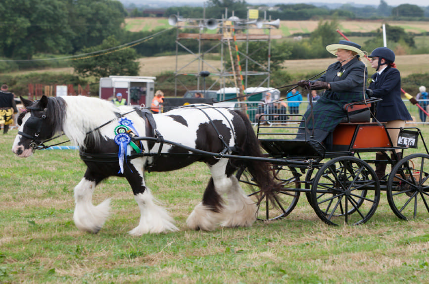 Fillongley Show 2018_49