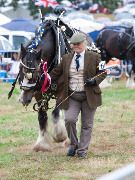 Fillongley Show 2018_67