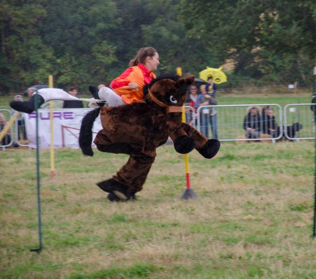 panto horses 3