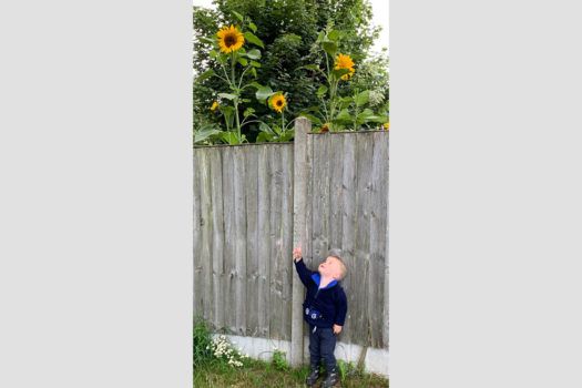 George Haddon - Best Under 5