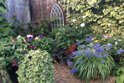 Julie Redmond - Best Container Flowers / Vegetables