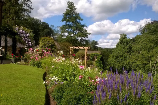 Pauline Lupton - 2nd - Flower Garden